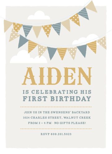 Birthday Invitations Party Invites Basic Invite