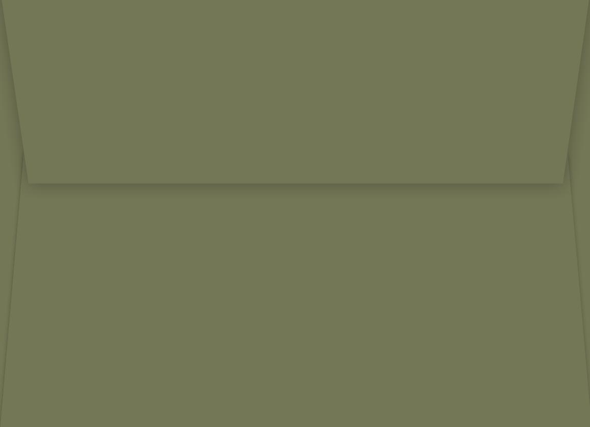 Envelope Olive