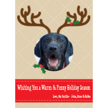 The Warm and Fuzzy Holiday Card