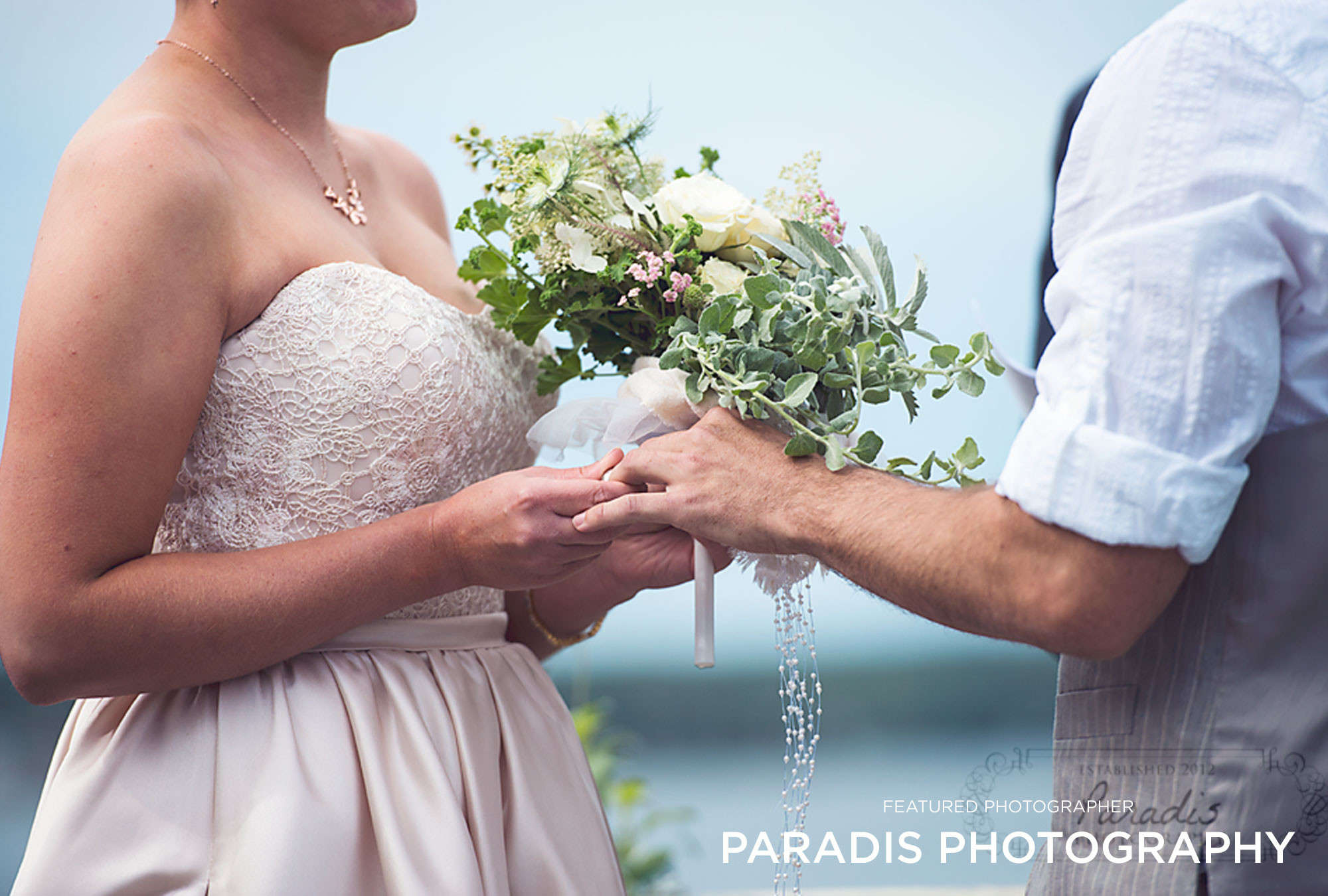 Paradis Photography - Featured Photographer