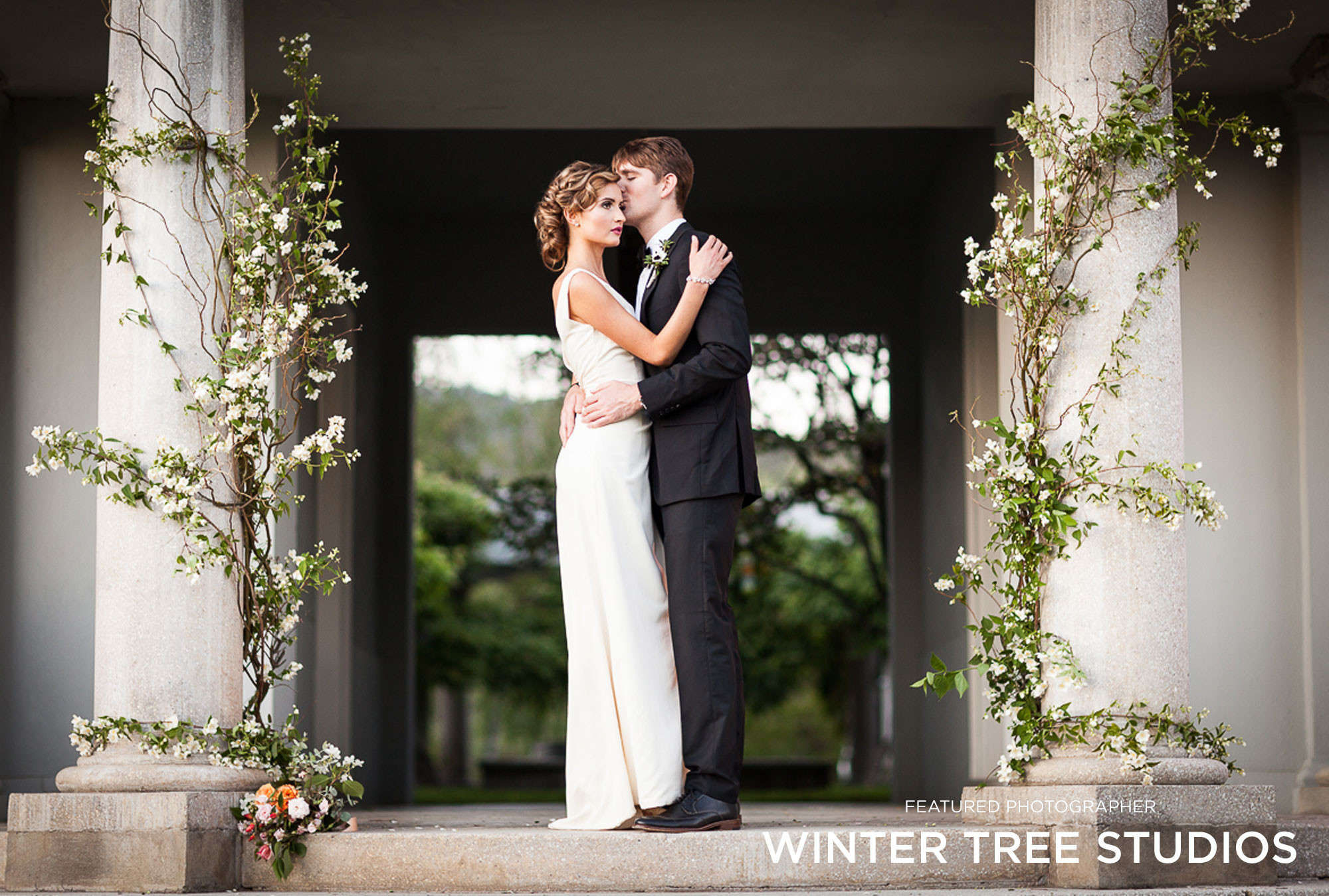 Winter Tree Studios - Featured Photographer