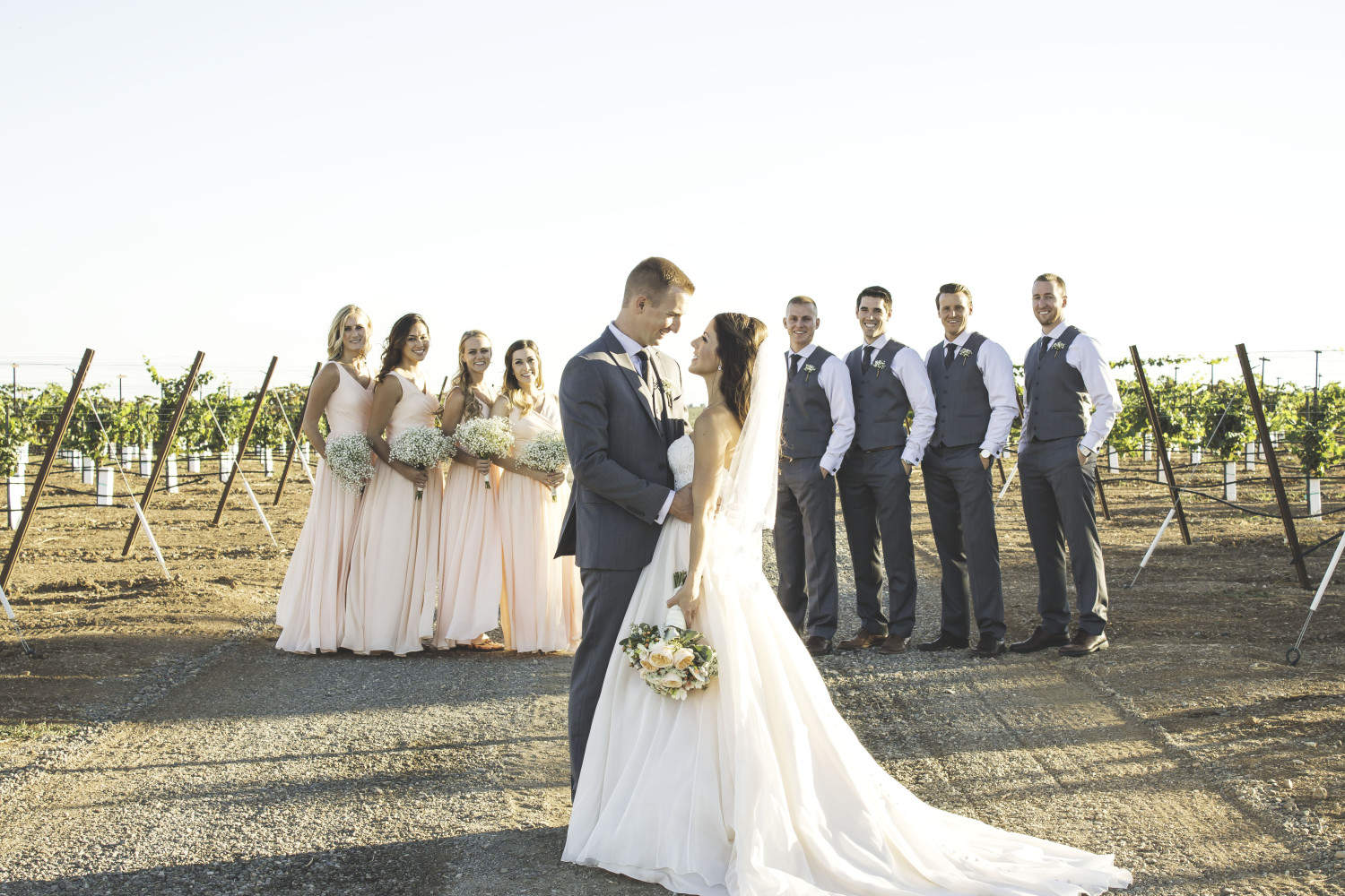 windmill farm and vineyard wedding