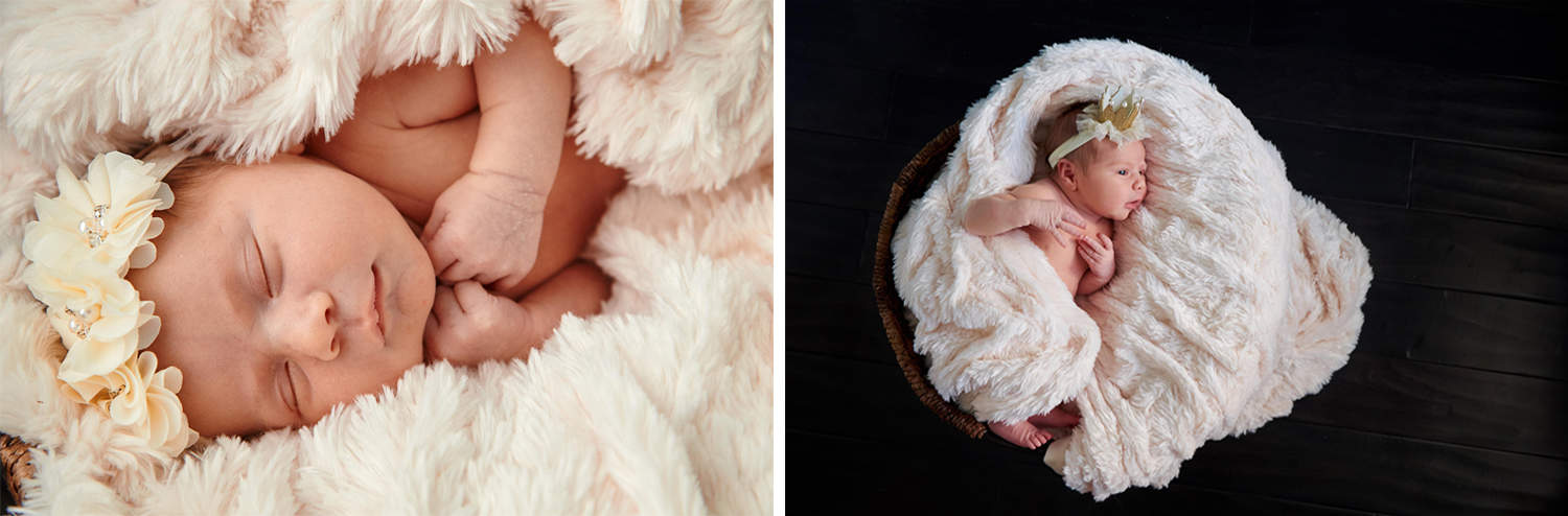 Sarah Arnoff Photos Utah Newborn Photography