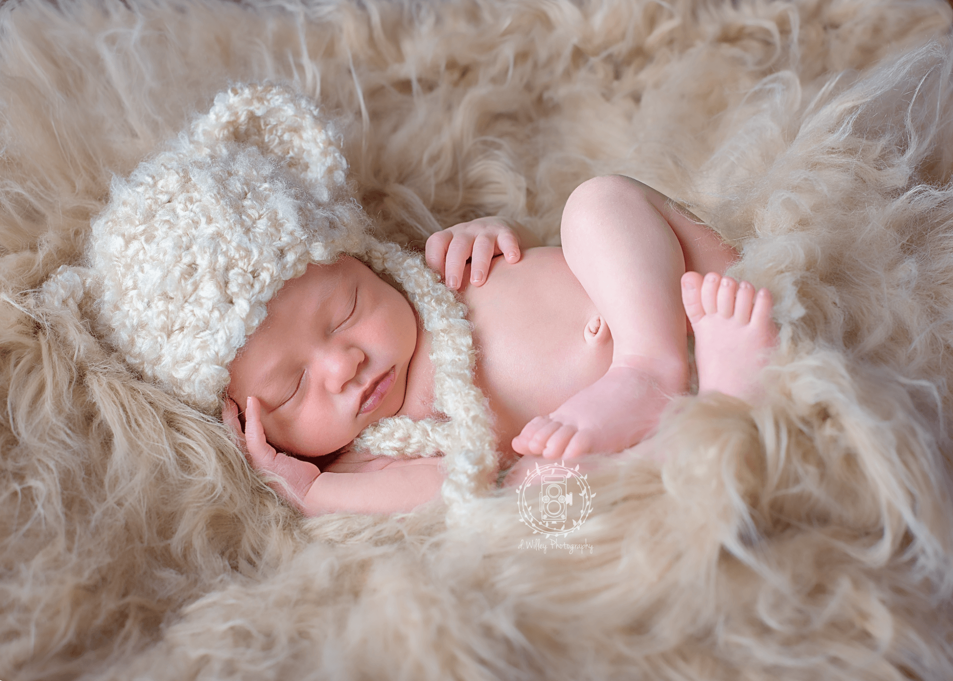 D. Willey Photography | Rifle, Colorado Newborn and Children's Photographer
