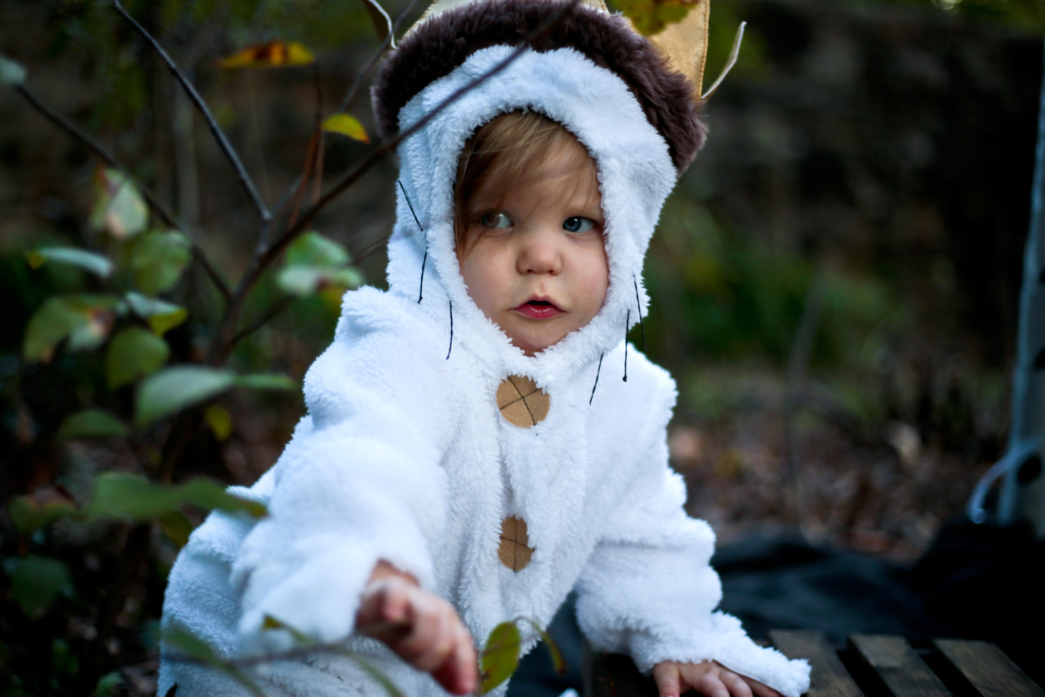 Photography - Baby Max