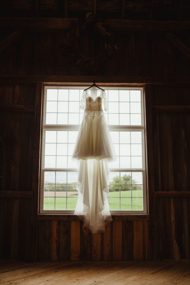 Amanda Steffke Photography - Dress
