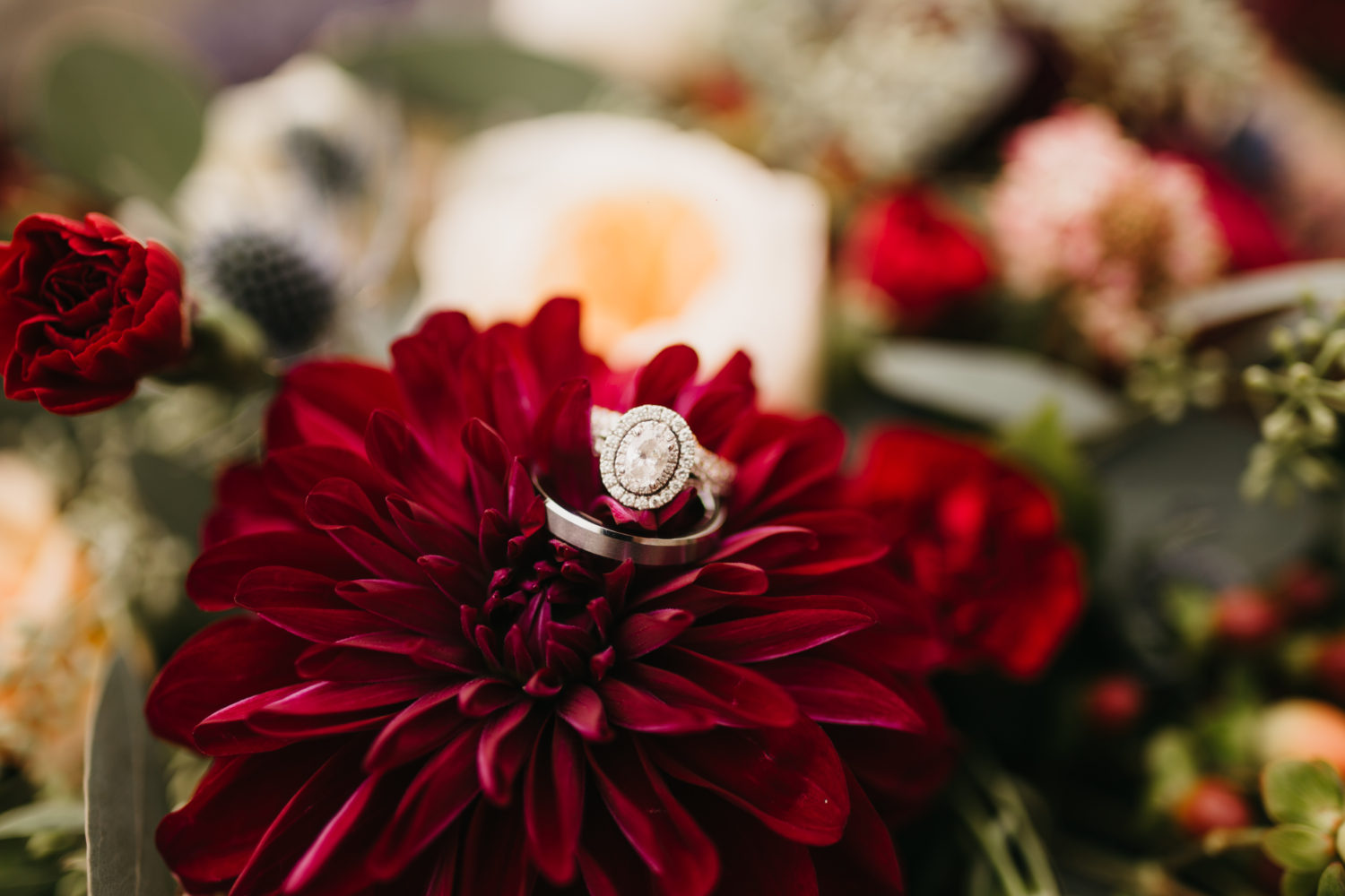 Amanda Steffke Photography - Ring Shot