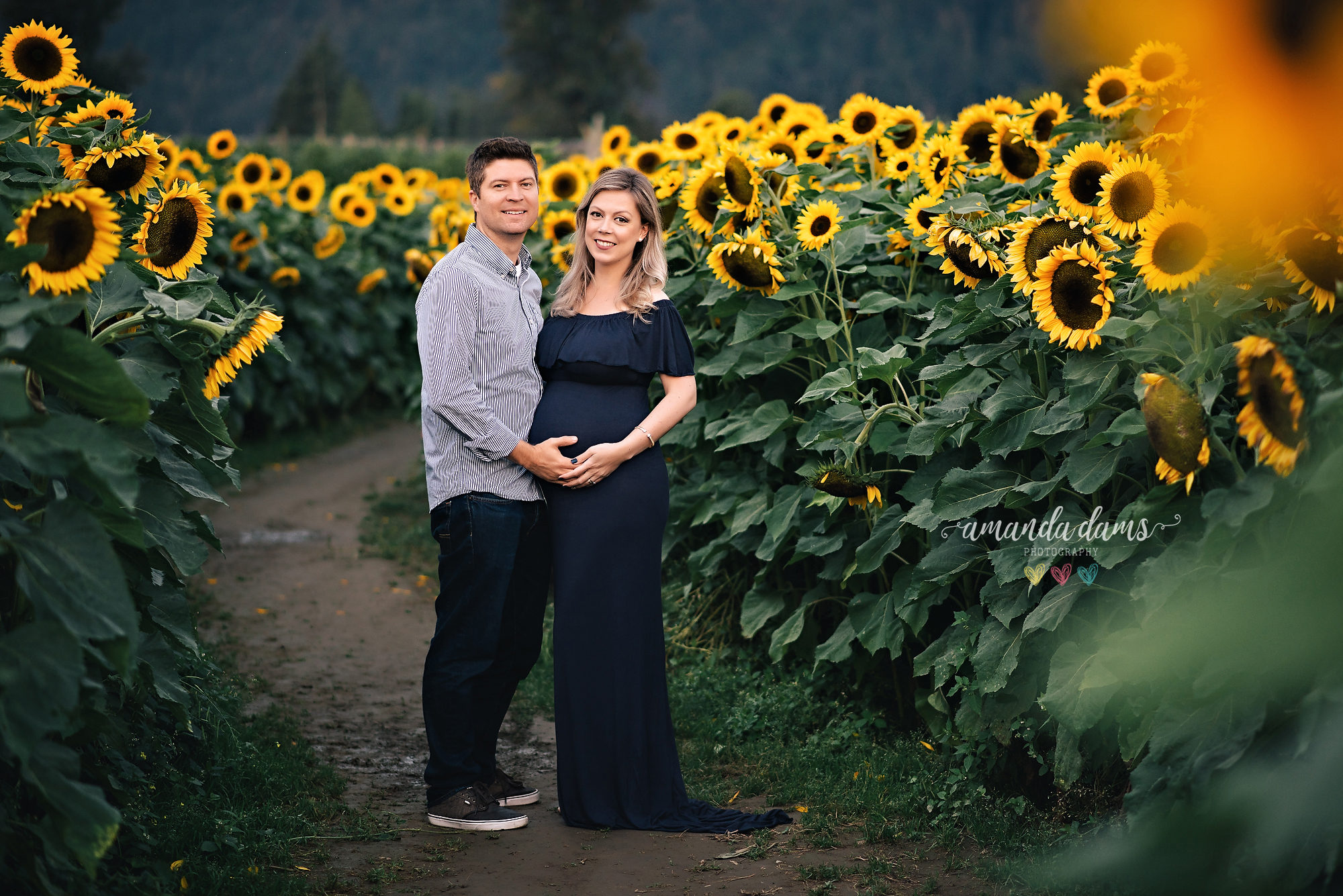 maternity-photo-session-vancouver-sunflower-couple